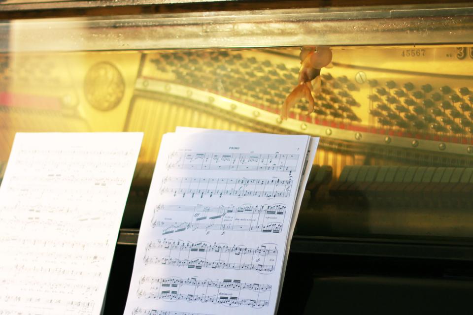 eunice_artur_veraprokic_pianoconcerto1